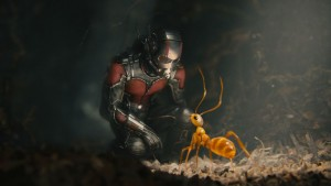 Heroic Hollywood | The Films Of The Marvel Cinematic Universe, Ranked From Worst To Best image 3 Ant-Man