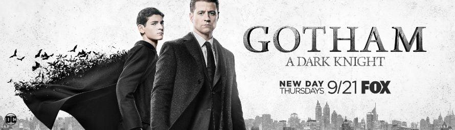 Gotham Ben McKenzie David Mazouz Banner