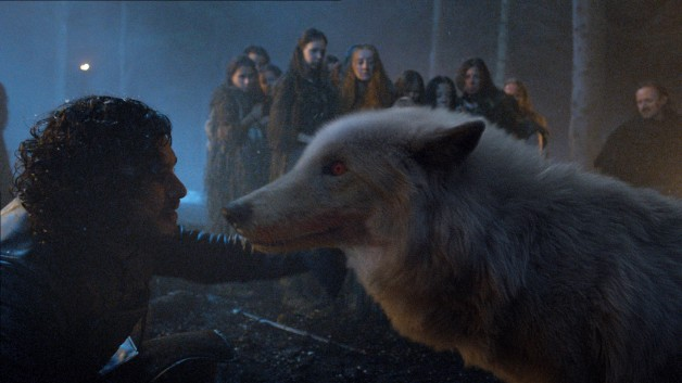 Game of Thrones HBO Jon Snow Ghost