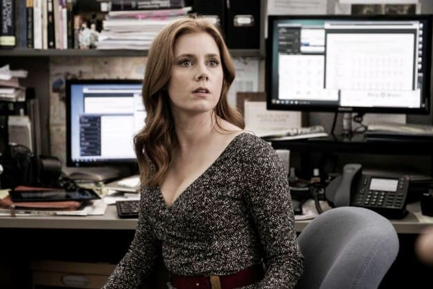 Amy Adams Batman Superman DC Universe