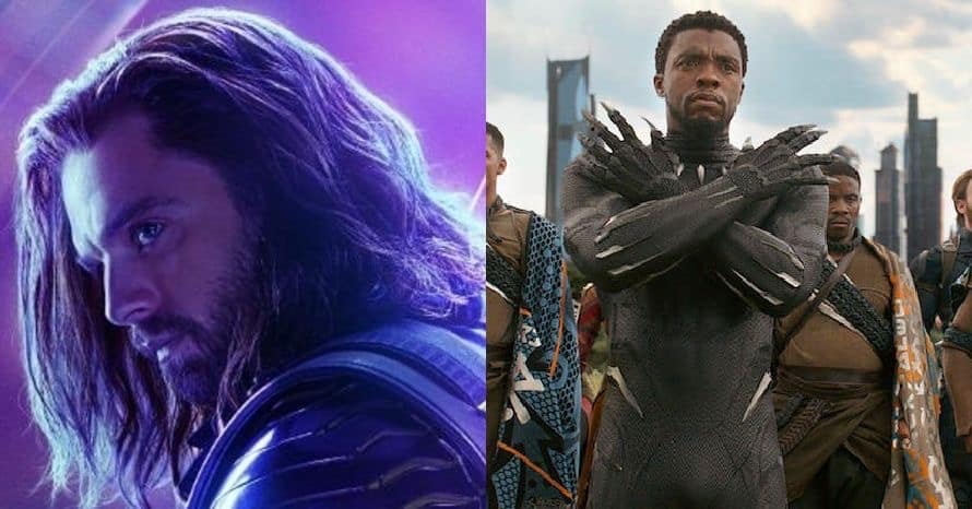The Winter Soldier Black Panther Avengers Infinity War