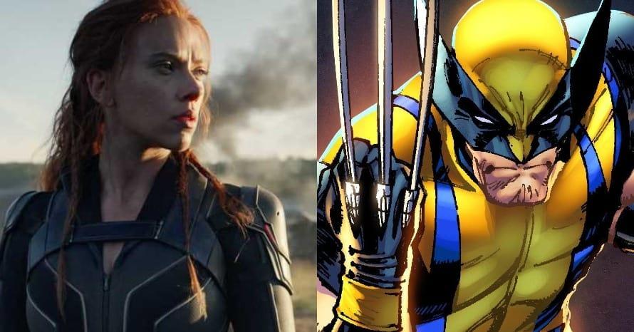 Black Widow Marvel Wolverine